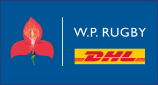 stormers dhl